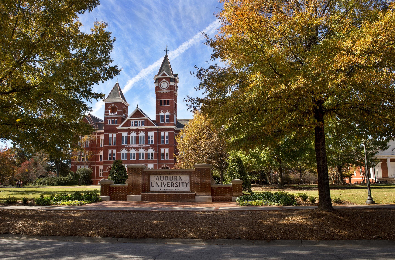 Auburn college application essay free comparison essay example